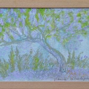 Vana sirelipuu
